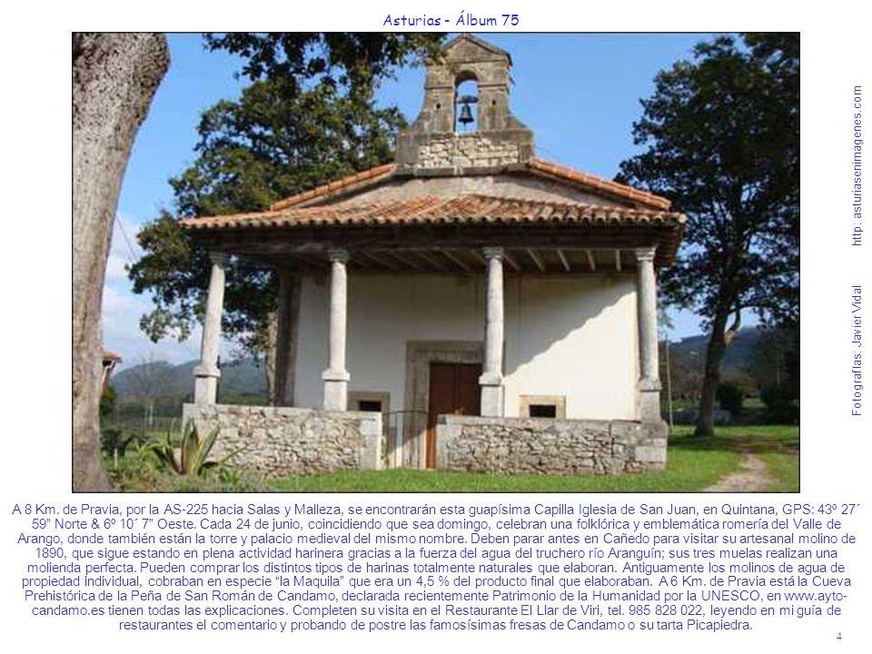 4 Asturias - Álbum 75 Fotografías: Javier Vidal http: asturiasenimagenes.com A 8 Km. de Pravia, por la AS-225 hacia Salas y Malleza, se encontrarán es