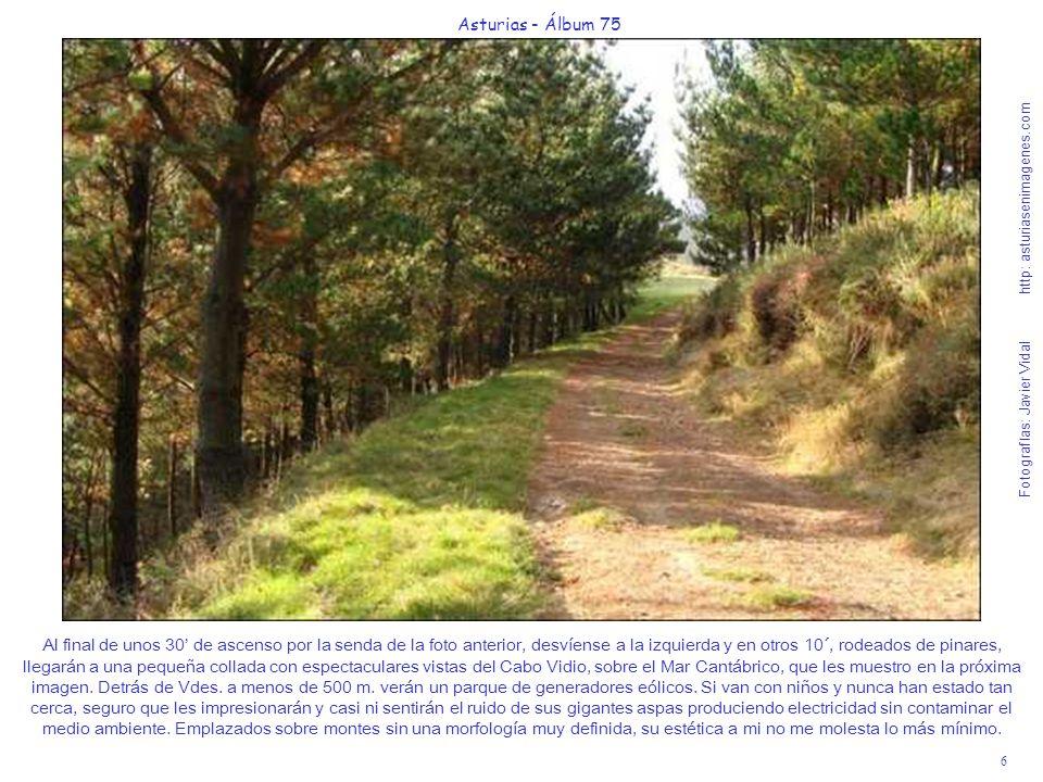 6 Asturias - Álbum 75 Fotografías: Javier Vidal http: asturiasenimagenes.com Al final de unos 30 de ascenso por la senda de la foto anterior, desvíens