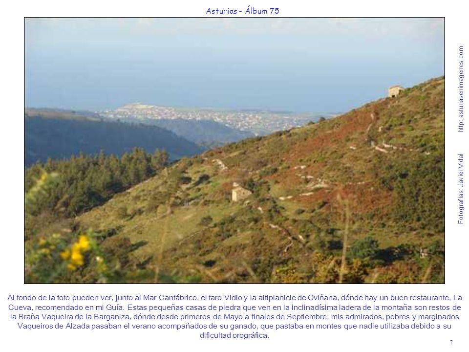 7 Asturias - Álbum 75 Fotografías: Javier Vidal http: asturiasenimagenes.com Al fondo de la foto pueden ver, junto al Mar Cantábrico, el faro Vidio y
