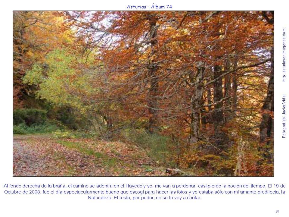 10 Asturias - Álbum 74 Fotografías: Javier Vidal http: asturiasenimagenes.com Al fondo derecha de la braña, el camino se adentra en el Hayedo y yo, me