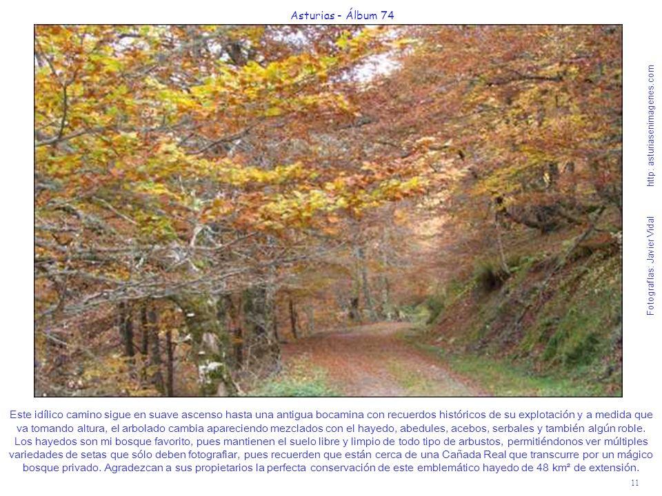 11 Asturias - Álbum 74 Fotografías: Javier Vidal http: asturiasenimagenes.com Este idílico camino sigue en suave ascenso hasta una antigua bocamina co