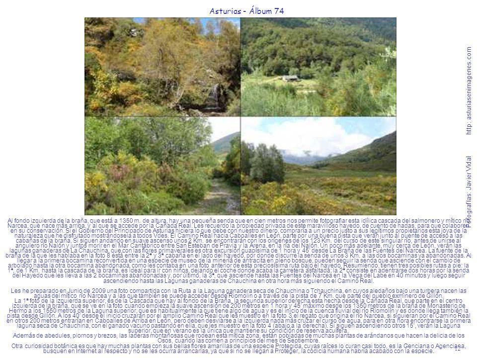 12 Asturias - Álbum 74 Fotografías: Javier Vidal http: asturiasenimagenes.com Al fondo izquierda de la braña, que está a 1350 m. de altura, hay una pe