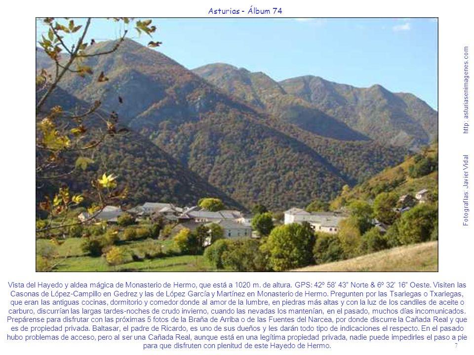 7 Asturias - Álbum 74 Fotografías: Javier Vidal http: asturiasenimagenes.com Vista del Hayedo y aldea mágica de Monasterio de Hermo, que está a 1020 m