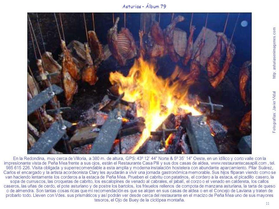 11 Asturias - Álbum 79 Fotografías: Javier Vidal http: asturiasenimagenes.com En la Redondina, muy cerca de Villoria, a 380 m. de altura, GPS: 43º 12