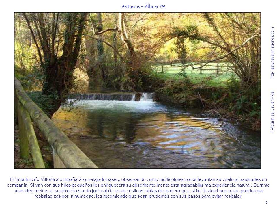 6 Asturias - Álbum 79 Fotografías: Javier Vidal http: asturiasenimagenes.com El impoluto río Villoria acompañará su relajado paseo, observando como mu
