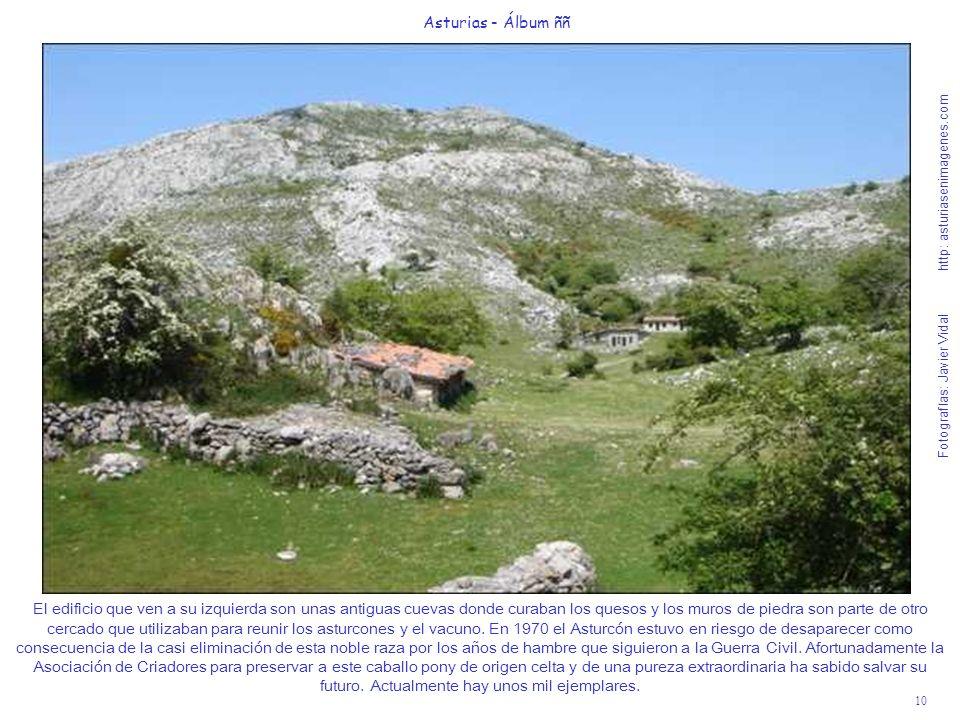 10 Asturias - Álbum ññ Fotografías: Javier Vidal http: asturiasenimagenes.com El edificio que ven a su izquierda son unas antiguas cuevas donde curaba