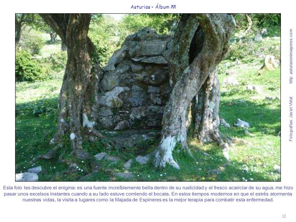12 Asturias - Álbum ññ Fotografías: Javier Vidal http: asturiasenimagenes.com Esta foto les descubre el enigma: es una fuente increíblemente bella den