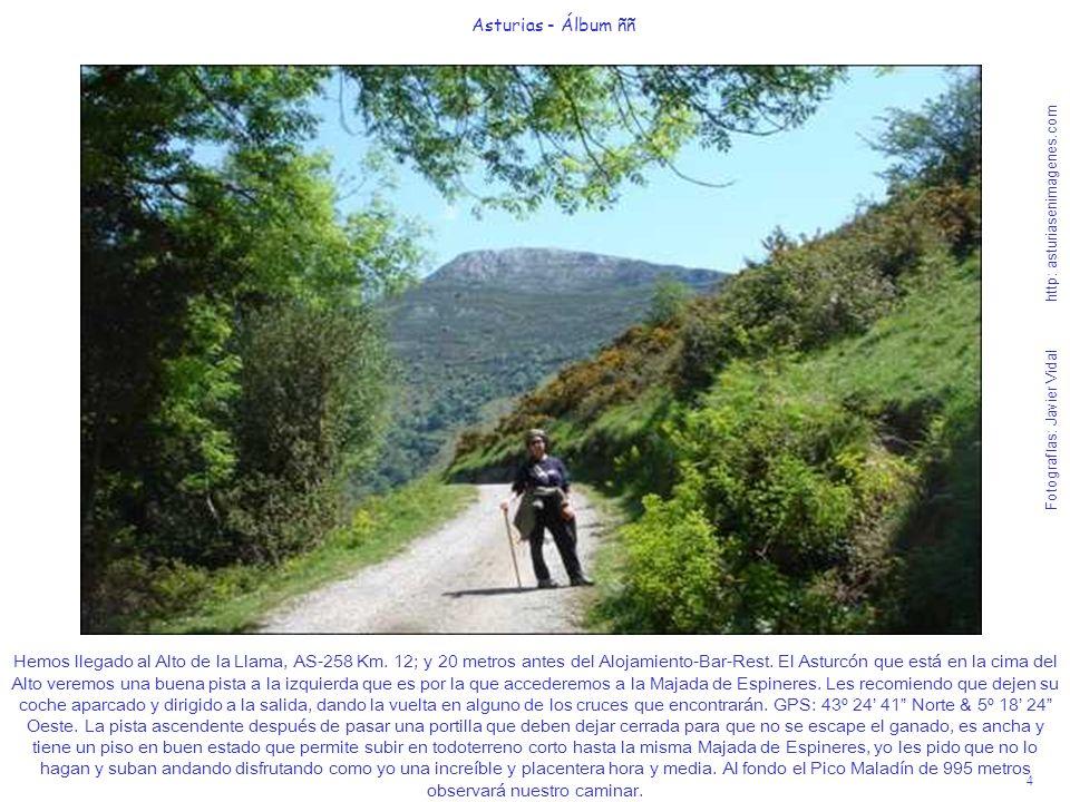 4 Asturias - Álbum ññ Fotografías: Javier Vidal http: asturiasenimagenes.com Hemos llegado al Alto de la Llama, AS-258 Km. 12; y 20 metros antes del A