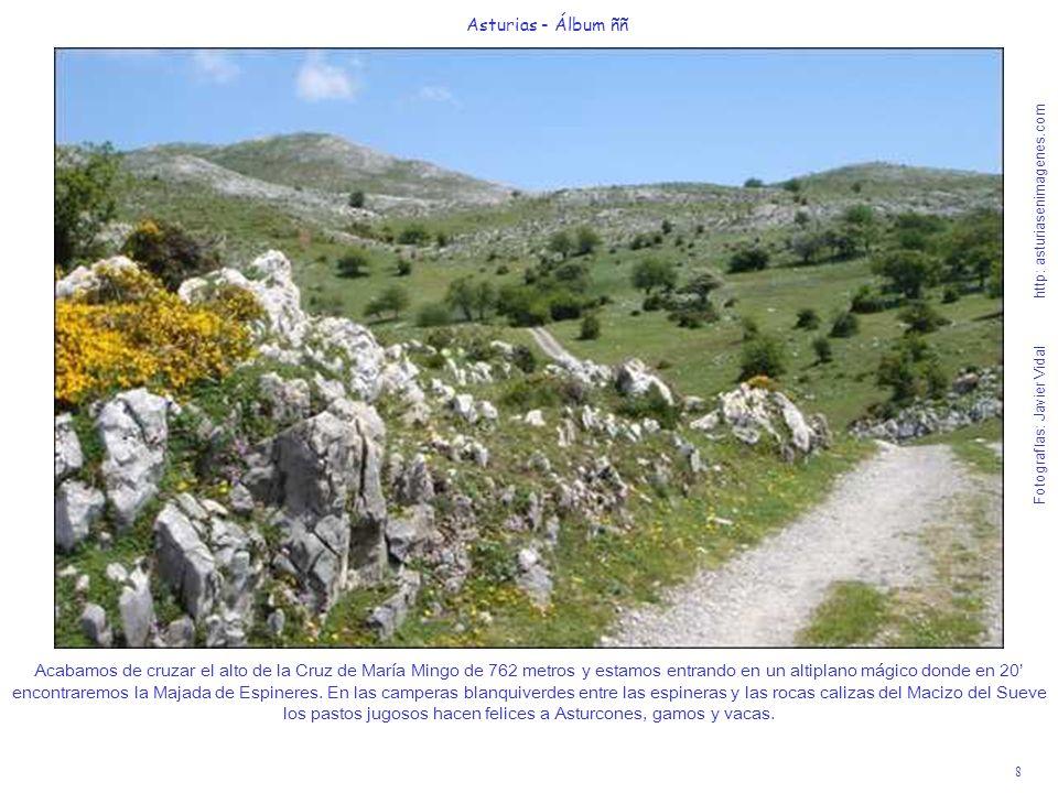 8 Asturias - Álbum ññ Fotografías: Javier Vidal http: asturiasenimagenes.com Acabamos de cruzar el alto de la Cruz de María Mingo de 762 metros y esta