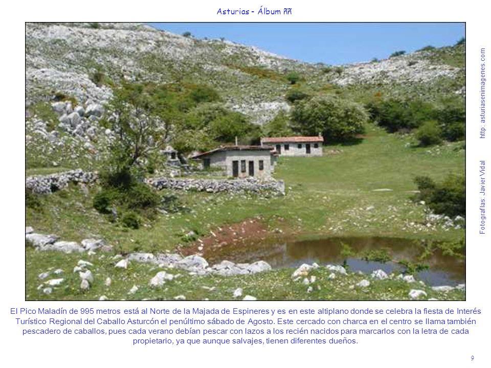 9 Asturias - Álbum ññ Fotografías: Javier Vidal http: asturiasenimagenes.com El Pico Maladín de 995 metros está al Norte de la Majada de Espineres y e