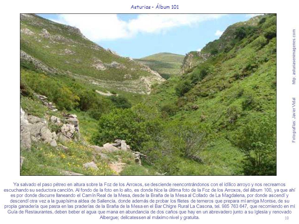 10 Asturias - Álbum 101 Fotografías: Javier Vidal http: asturiasenimagenes.com Ya salvado el paso pétreo en altura sobre la Foz de los Arroxos, se des