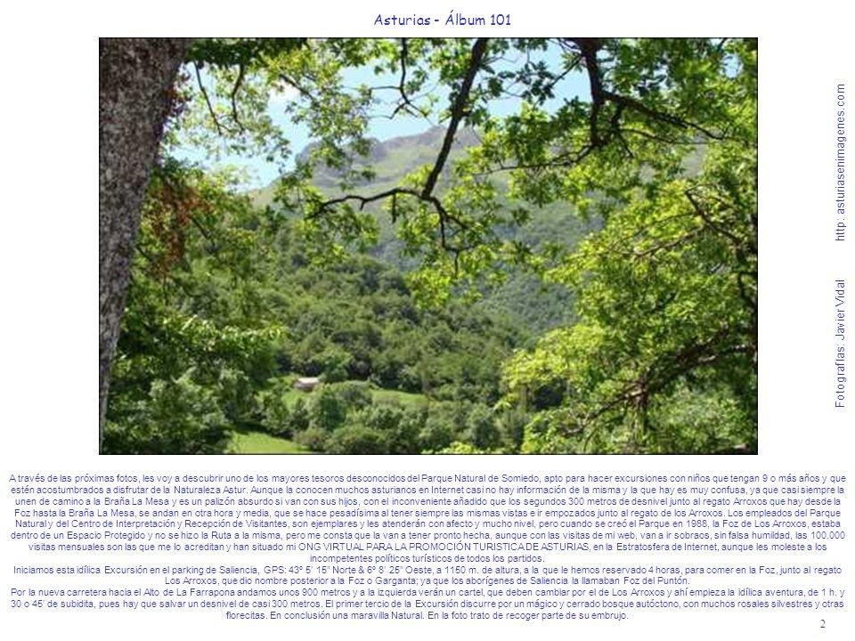 3 Asturias - Álbum 101 Fotografías: Javier Vidal http: asturiasenimagenes.com Después de subir unos 20 por el bosque se encontrarán en un claro, rodeados de rosales silvestres, esta inconmensurable visión de la Foz de Los Arroxos, hacia la que nos dirigimos para descubrir y saborear a fondo.