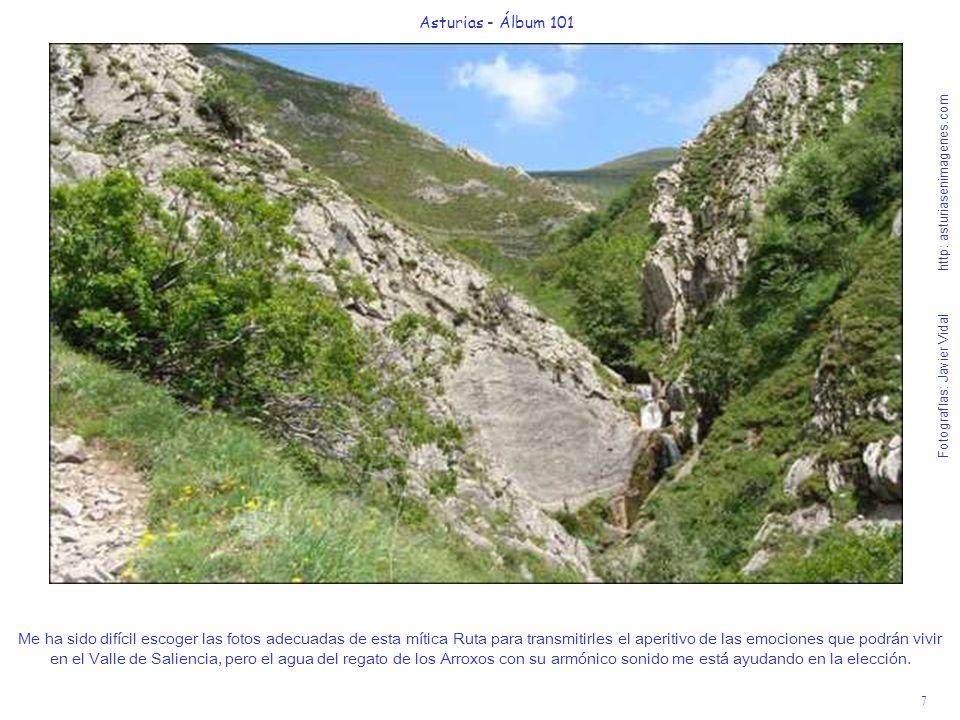 8 Asturias - Álbum 101 Fotografías: Javier Vidal http: asturiasenimagenes.com Como las tres cascaditas de la foto anterior se ven muy lejos, se las he acercado para saborearlas con mayor intensidad.