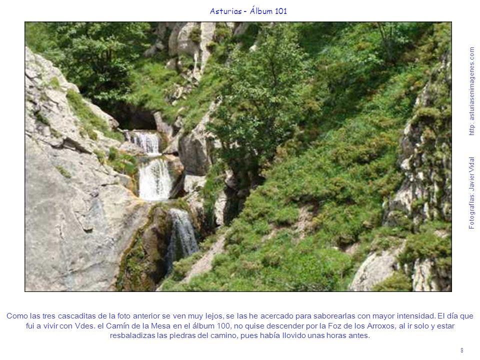 8 Asturias - Álbum 101 Fotografías: Javier Vidal http: asturiasenimagenes.com Como las tres cascaditas de la foto anterior se ven muy lejos, se las he