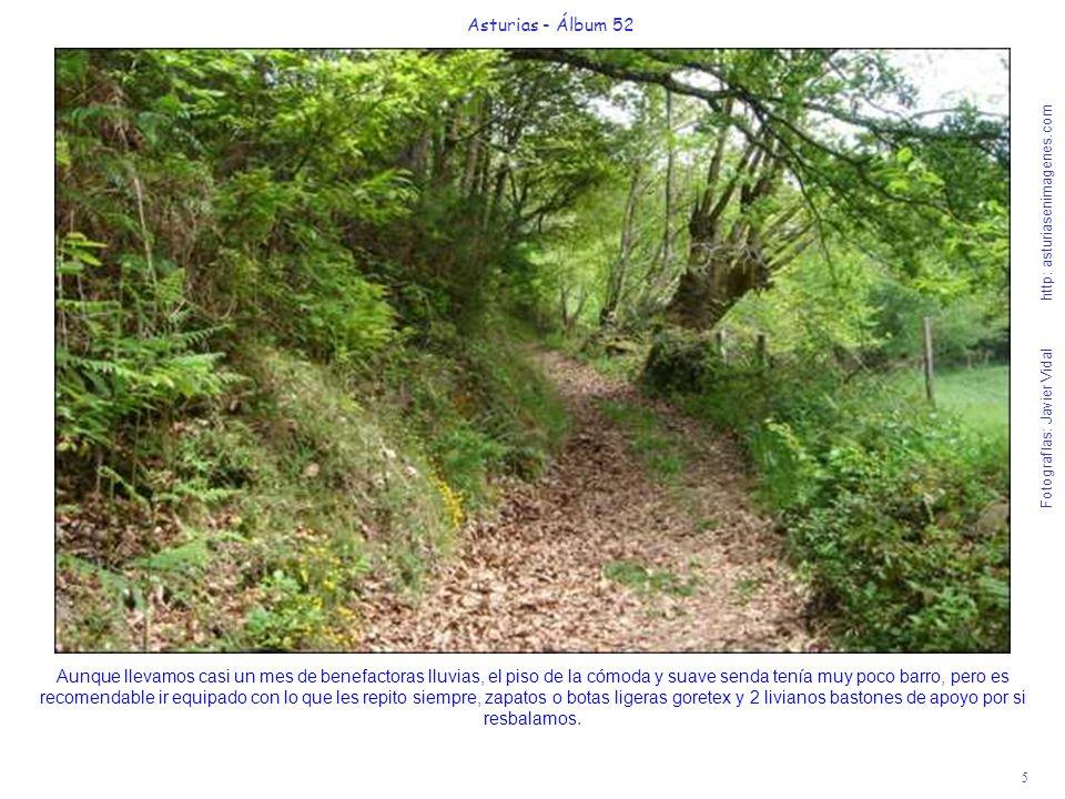 5 Asturias - Álbum 52 Fotografías: Javier Vidal http: asturiasenimagenes.com Aunque llevamos casi un mes de benefactoras lluvias, el piso de la cómoda