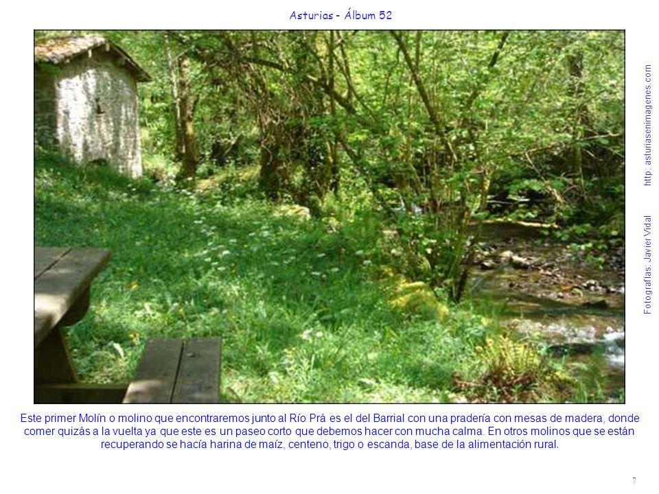 7 Asturias - Álbum 52 Fotografías: Javier Vidal http: asturiasenimagenes.com Este primer Molín o molino que encontraremos junto al Río Prá es el del B