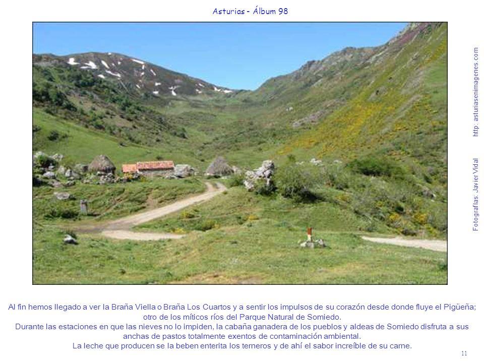 11 Asturias - Álbum 98 Fotografías: Javier Vidal http: asturiasenimagenes.com Al fin hemos llegado a ver la Braña Viella o Braña Los Cuartos y a senti