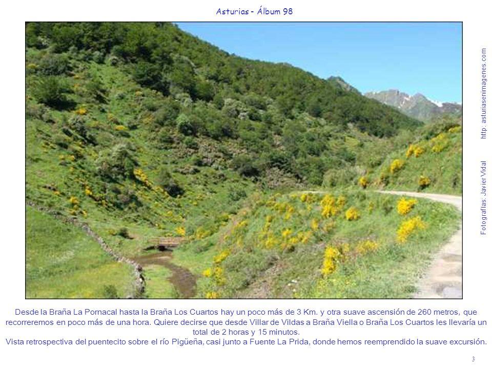 3 Asturias - Álbum 98 Fotografías: Javier Vidal http: asturiasenimagenes.com Desde la Braña La Pornacal hasta la Braña Los Cuartos hay un poco más de