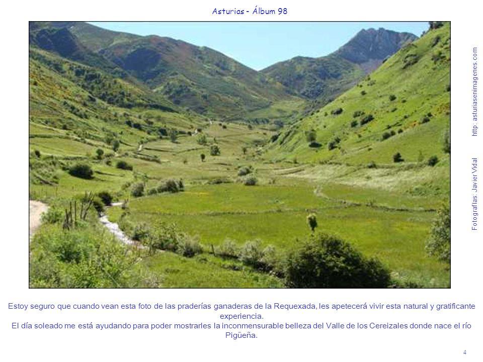 4 Asturias - Álbum 98 Fotografías: Javier Vidal http: asturiasenimagenes.com Estoy seguro que cuando vean esta foto de las praderías ganaderas de la R