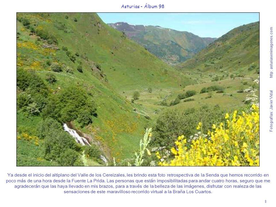 8 Asturias - Álbum 98 Fotografías: Javier Vidal http: asturiasenimagenes.com Ya desde el inicio del altiplano del Valle de los Cereizales, les brindo