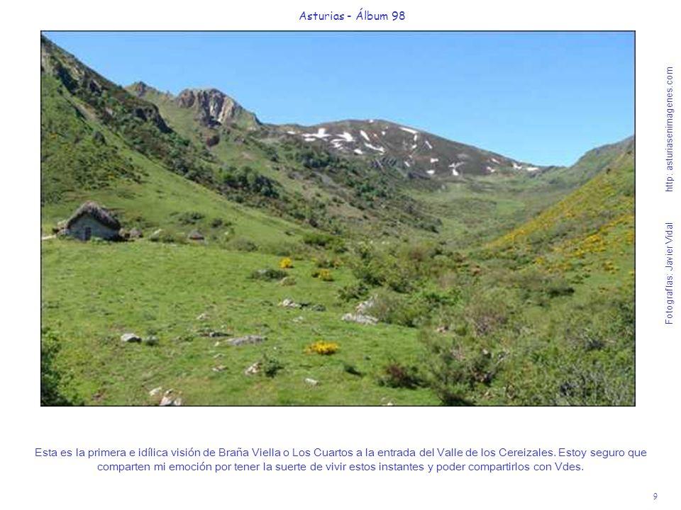 9 Asturias - Álbum 98 Fotografías: Javier Vidal http: asturiasenimagenes.com Esta es la primera e idílica visión de Braña Viella o Los Cuartos a la en