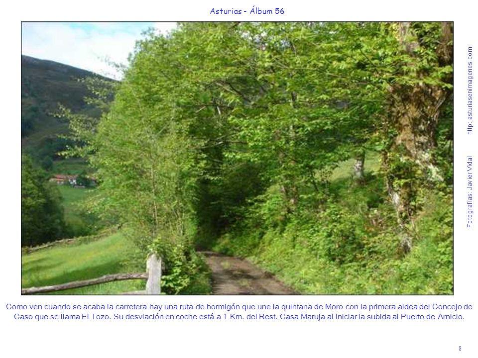 9 Asturias - Álbum 56 Fotografías: Javier Vidal http: asturiasenimagenes.com A la imagen sobran comentarios y si van con niños entre las cascaditas de la riega que hay junto a la carreterina y la naturaleza que van a descubrir fliparán seguro.