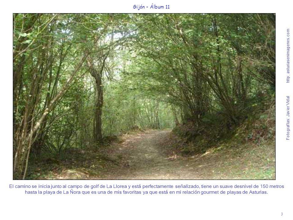 3 Gijón - Álbum 11 Fotografías: Javier Vidal http: asturiasenimagenes.com El camino se inicia junto al campo de golf de La Llorea y está perfectamente