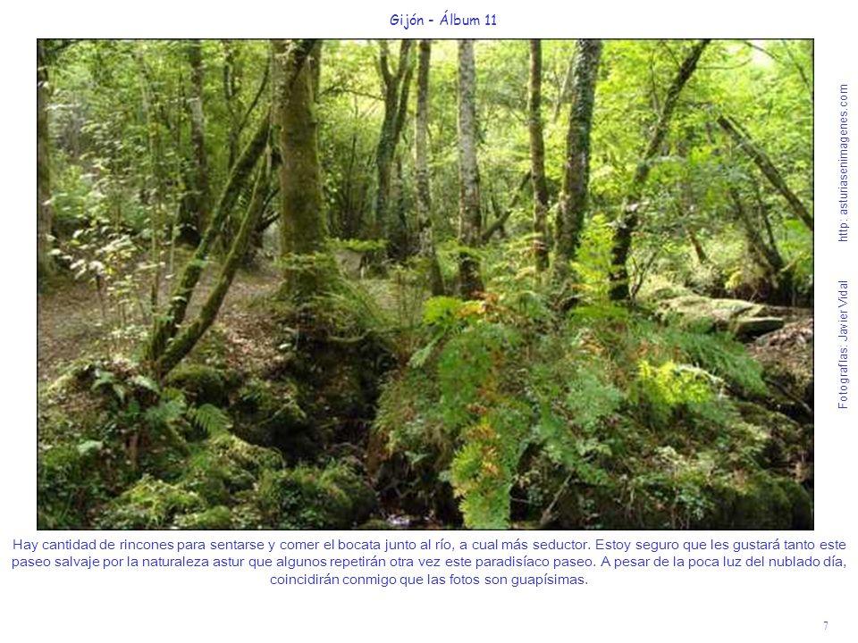 7 Gijón - Álbum 11 Fotografías: Javier Vidal http: asturiasenimagenes.com Hay cantidad de rincones para sentarse y comer el bocata junto al río, a cua