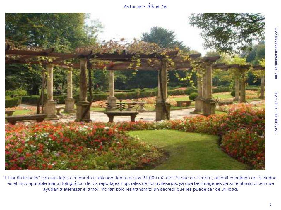 6 Asturias - Álbum 16 Fotografías: Javier Vidal http: asturiasenimagenes.com El jardín francés con sus tejos centenarios, ubicado dentro de los 81.000