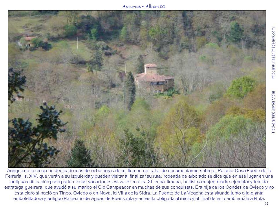 11 Asturias - Álbum 51 Fotografías: Javier Vidal http: asturiasenimagenes.com Aunque no lo crean he dedicado más de ocho horas de mi tiempo en tratar de documentarme sobre el Palacio-Casa Fuerte de la Ferrería, s.