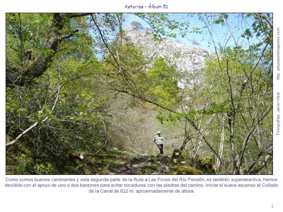 2 Asturias - Álbum 51 Fotografías: Javier Vidal http: asturiasenimagenes.com Como somos buenos caminantes y esta segunda parte de la Ruta a Las Foces del Río Pendón, es también superatractiva, hemos decidido con el apoyo de uno o dos bastones para evitar torceduras con las piedras del camino, iniciar el suave ascenso al Collado de la Canal de 622 m.
