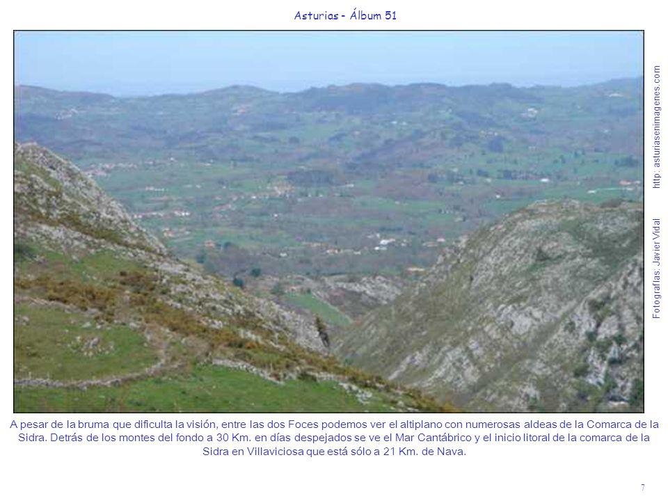 7 Asturias - Álbum 51 Fotografías: Javier Vidal http: asturiasenimagenes.com A pesar de la bruma que dificulta la visión, entre las dos Foces podemos ver el altiplano con numerosas aldeas de la Comarca de la Sidra.