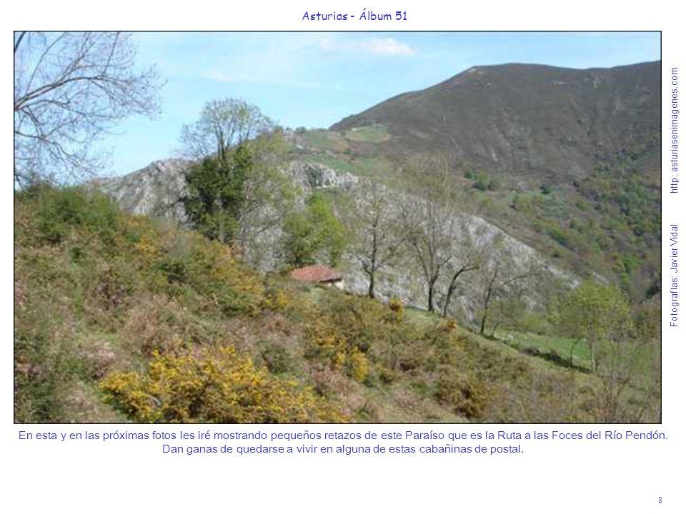 8 Asturias - Álbum 51 Fotografías: Javier Vidal http: asturiasenimagenes.com En esta y en las próximas fotos les iré mostrando pequeños retazos de este Paraíso que es la Ruta a las Foces del Río Pendón.