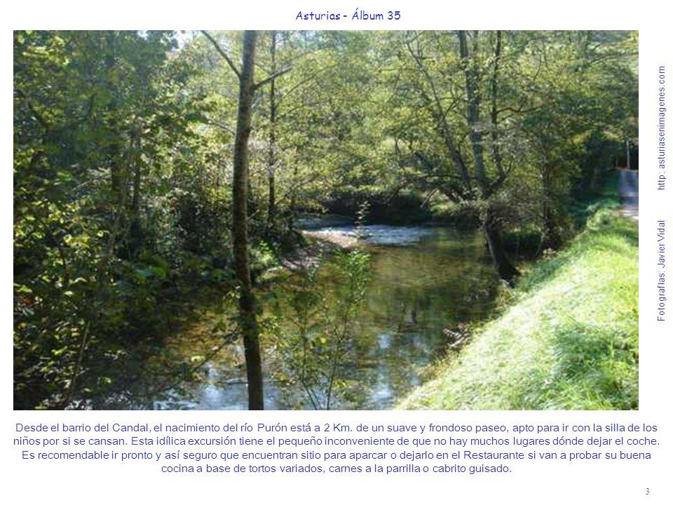 3 Asturias - Álbum 35 Fotografías: Javier Vidal http: asturiasenimagenes.com Desde el barrio del Candal, el nacimiento del río Purón está a 2 Km. de u