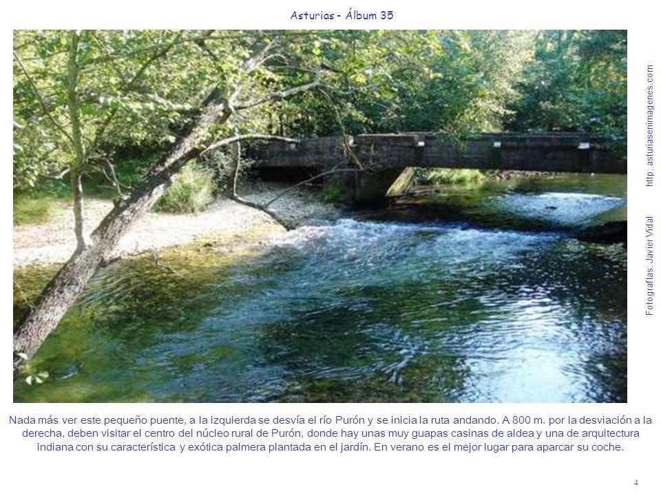 4 Asturias - Álbum 35 Fotografías: Javier Vidal http: asturiasenimagenes.com Nada más ver este pequeño puente, a la izquierda se desvía el río Purón y