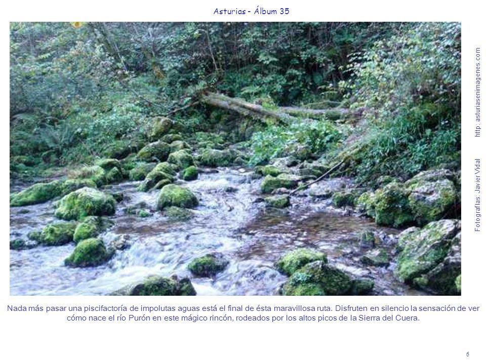 6 Asturias - Álbum 35 Fotografías: Javier Vidal http: asturiasenimagenes.com Nada más pasar una piscifactoría de impolutas aguas está el final de ésta
