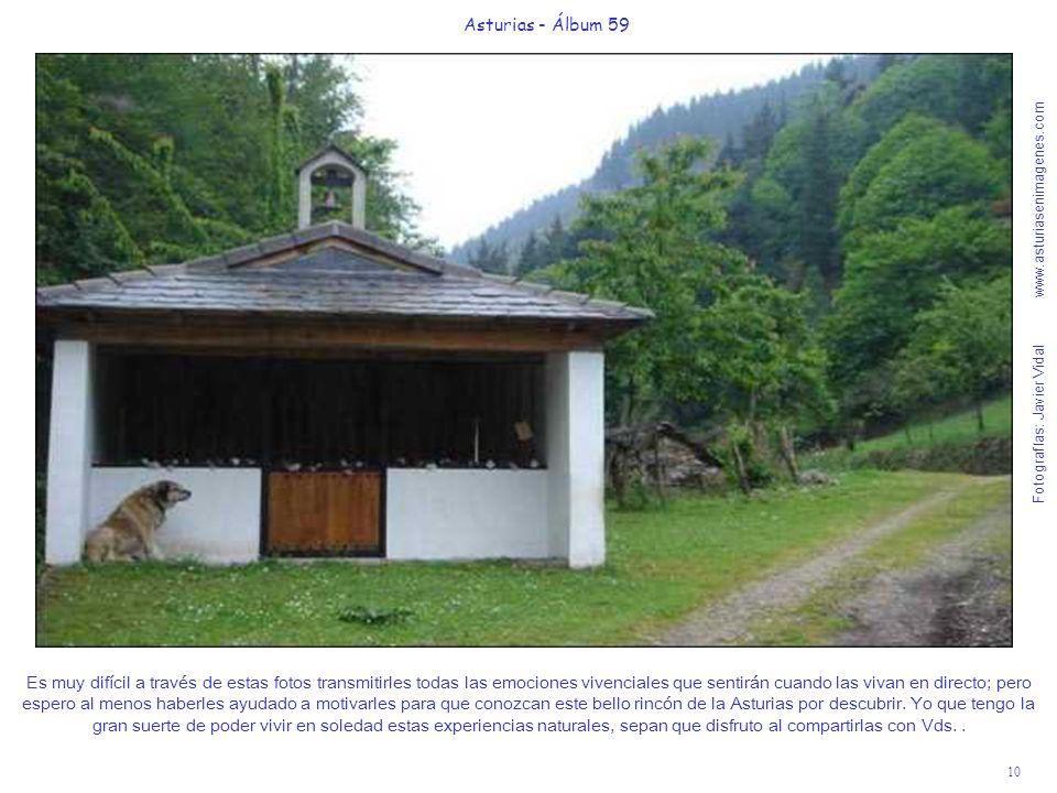 Fotografías: Javier Vidal www.asturiasenimagenes.com 10 Asturias - Álbum 59 Es muy difícil a través de estas fotos transmitirles todas las emociones vivenciales que sentirán cuando las vivan en directo; pero espero al menos haberles ayudado a motivarles para que conozcan este bello rincón de la Asturias por descubrir.