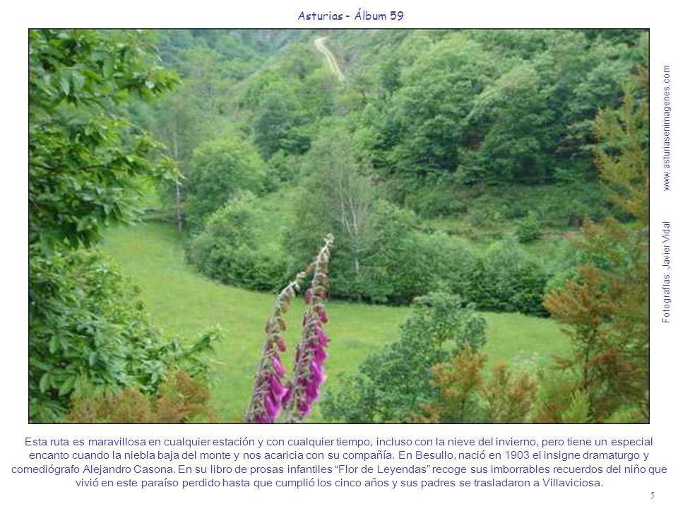 Fotografías: Javier Vidal www.asturiasenimagenes.com 5 Asturias - Álbum 59 Esta ruta es maravillosa en cualquier estación y con cualquier tiempo, incluso con la nieve del invierno, pero tiene un especial encanto cuando la niebla baja del monte y nos acaricia con su compañía.