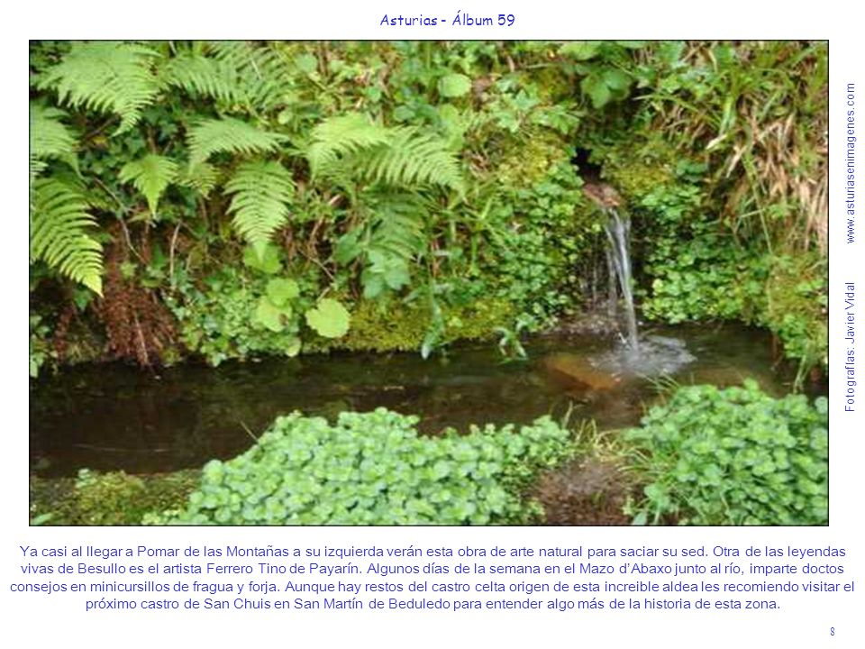 Fotografías: Javier Vidal www.asturiasenimagenes.com 9 Asturias - Álbum 59 Aunque las casas de Pomar de las Montañas están casi abandonadas hay un proyecto de inversión privada turística para reconvertirlas en un mini-resort rural de lujo que ayude a revitalizar este Lugar de Importancia Comunitaria.
