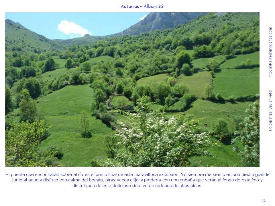 10 Asturias - Álbum 33 Fotografías: Javier Vidal http: asturiasenimagenes.com El puente que encontrarán sobre el río es el punto final de esta maravillosa excursión.
