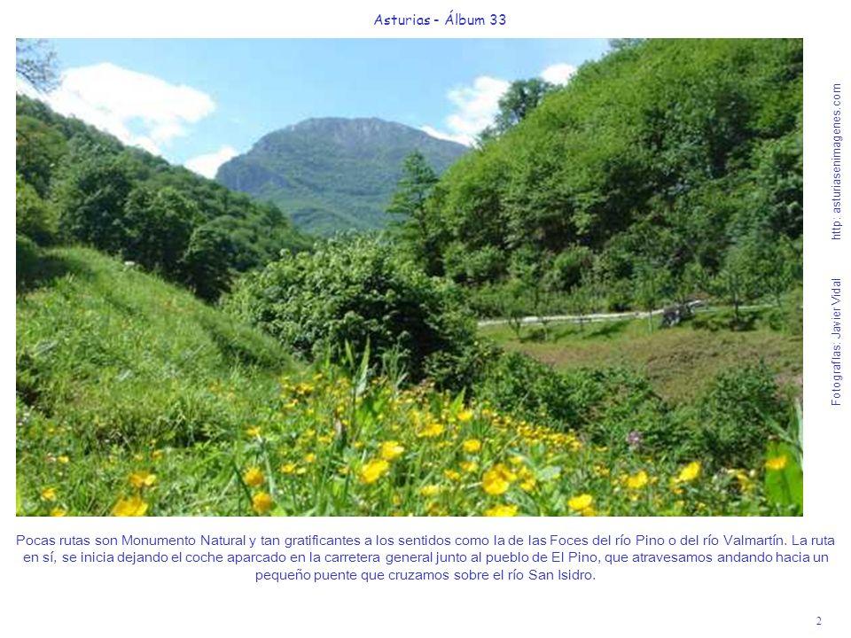 2 Asturias - Álbum 33 Fotografías: Javier Vidal http: asturiasenimagenes.com Pocas rutas son Monumento Natural y tan gratificantes a los sentidos como la de las Foces del río Pino o del río Valmartín.