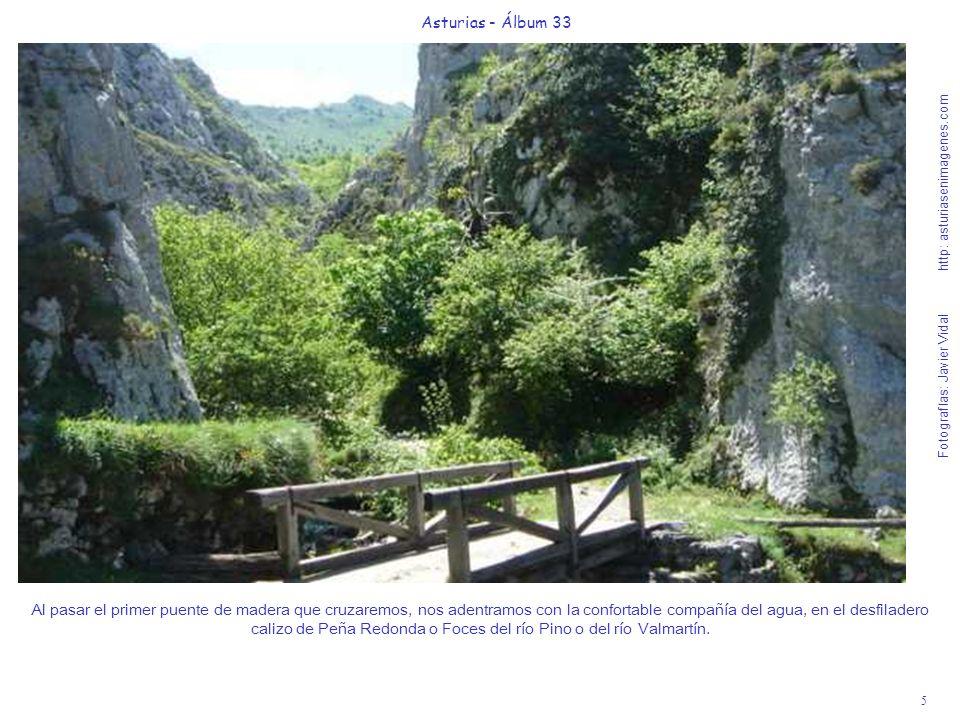 5 Asturias - Álbum 33 Fotografías: Javier Vidal http: asturiasenimagenes.com Al pasar el primer puente de madera que cruzaremos, nos adentramos con la confortable compañía del agua, en el desfiladero calizo de Peña Redonda o Foces del río Pino o del río Valmartín.