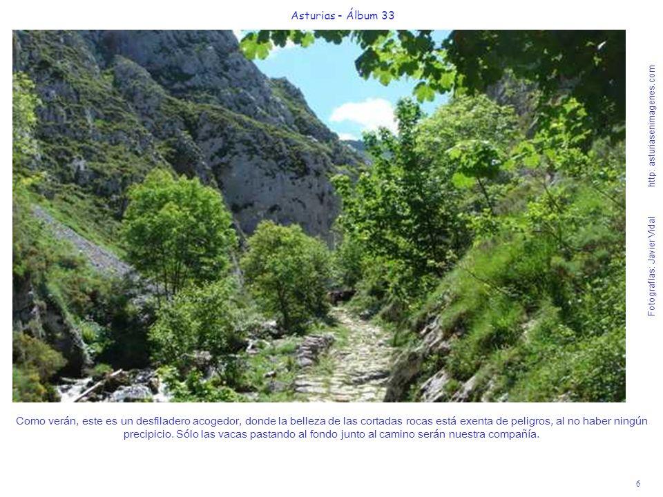 6 Asturias - Álbum 33 Fotografías: Javier Vidal http: asturiasenimagenes.com Como verán, este es un desfiladero acogedor, donde la belleza de las cortadas rocas está exenta de peligros, al no haber ningún precipicio.