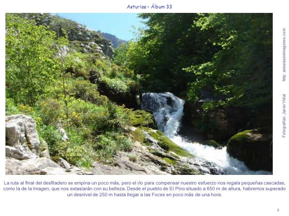 9 Asturias - Álbum 33 Fotografías: Javier Vidal http: asturiasenimagenes.com La ruta al final del desfiladero se empina un poco más, pero el río para compensar nuestro esfuerzo nos regala pequeñas cascadas, como la de la imagen, que nos extasiarán con su belleza.
