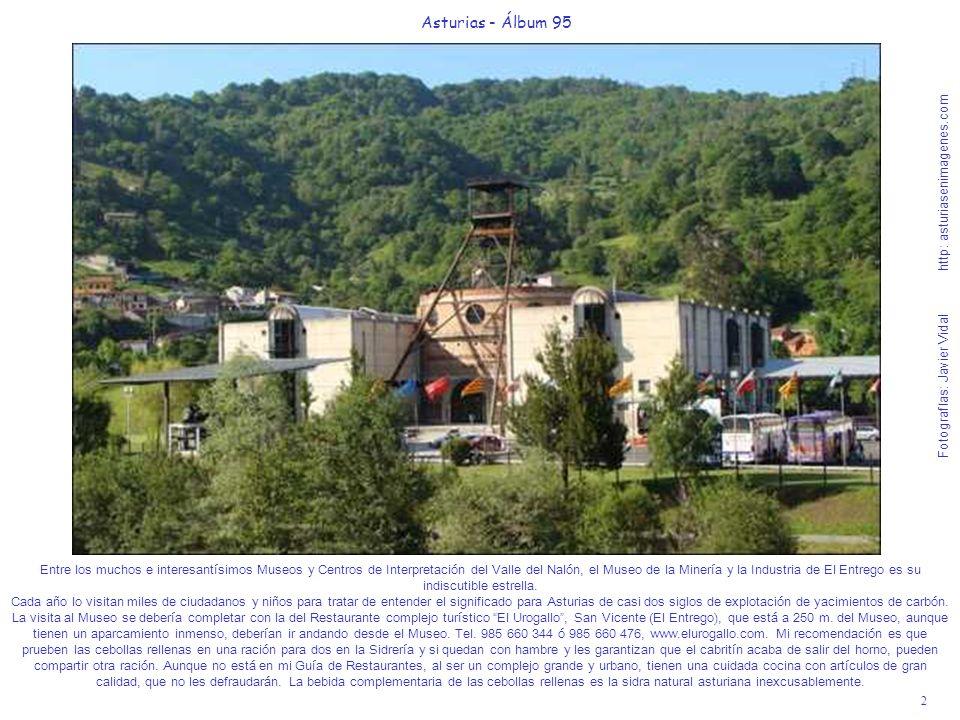 3 Asturias - Álbum 95 Fotografías: Javier Vidal http: asturiasenimagenes.com Recorrer el Valle del Nalón desde La Felguera a el Condao, por la Senda peatonal de más de 20 Km.