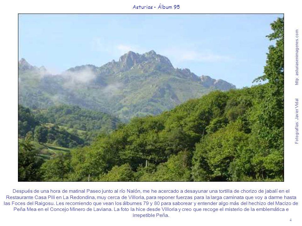 5 Asturias - Álbum 95 Fotografías: Javier Vidal http: asturiasenimagenes.com He dejado el coche en LAcebal, después de pasar por Ribota y voy a darme un paseíto de dos horas y media hacia la aldea de la Fomermeya o Fombermeya y a las Foces del río Cañaínes y del río Raigosu.