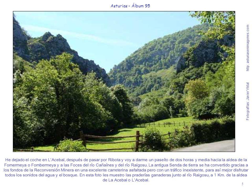 6 Asturias - Álbum 95 Fotografías: Javier Vidal http: asturiasenimagenes.com A 2,2 Km.