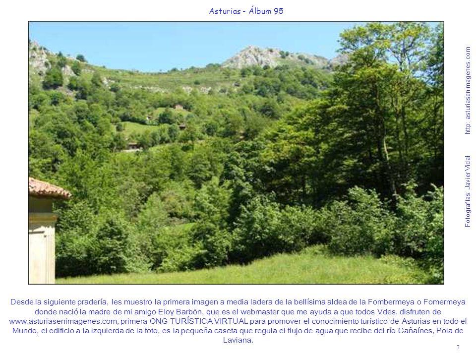 8 Asturias - Álbum 95 Fotografías: Javier Vidal http: asturiasenimagenes.com A 100 metros de la caseta, por una senda junto al río el desfiladero se estrecha y la Foz nos muestra toda su espectacular belleza.