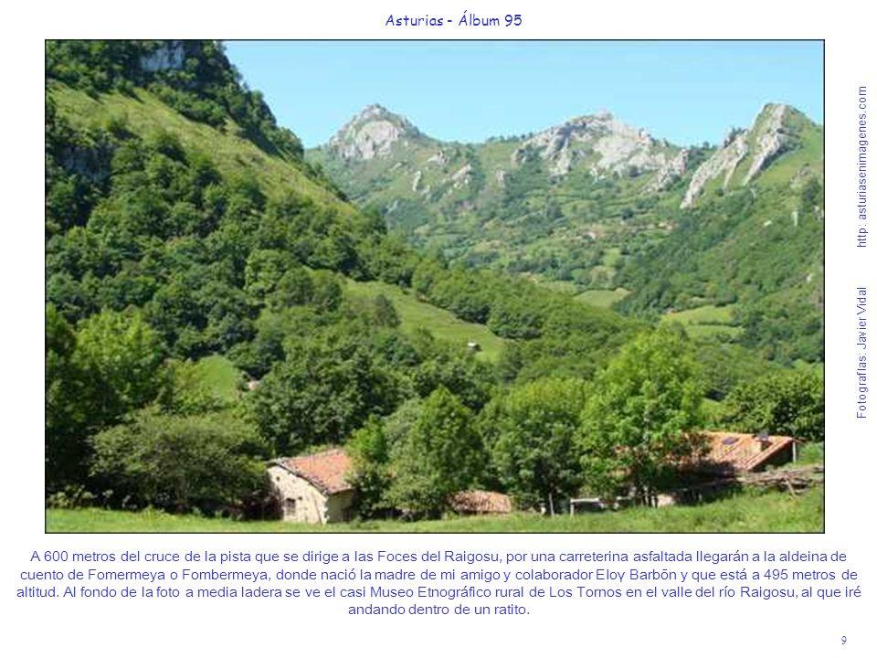 10 Asturias - Álbum 95 Fotografías: Javier Vidal http: asturiasenimagenes.com Al fondo de la foto, se ve en una pradería bellísima, la casetina reguladora del agua del río Cañaínes que da vida a los grifos de los habitantes de Pola de Laviana.