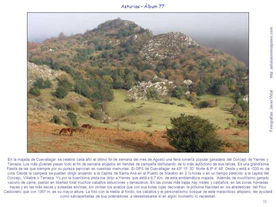 10 Asturias - Álbum 77 Fotografías: Javier Vidal http: asturiasenimagenes.com En la majada de Cuevallagar se celebra cada año el último fin de semana